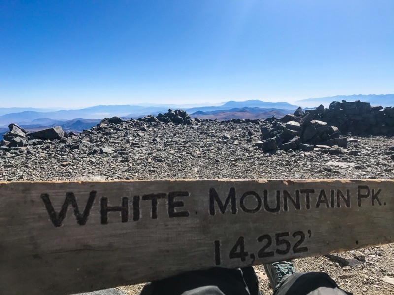 White Mountain summit and sign